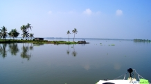 Inside the backwaters