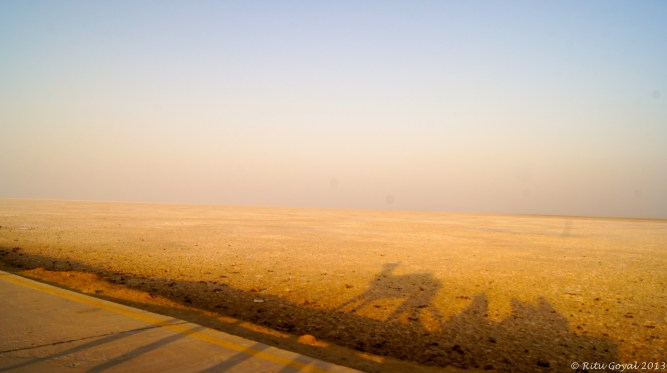 "Welcome to the Rann of Kutch! ""I thought the most beautiful thing in the world must be shadow.""  Sylvia Plath, The Bell Jar"