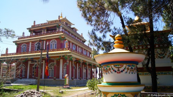 The Dorzong Monastic Institute